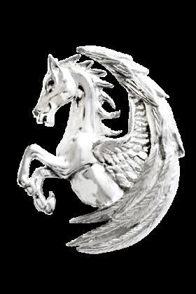Pegasus Fortuna (COM14)