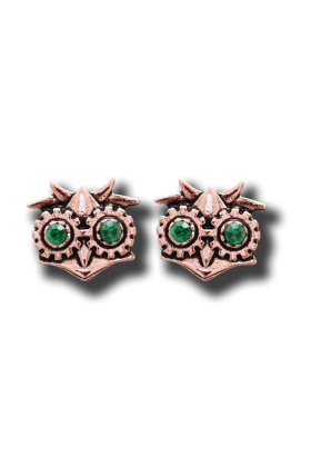 Aviamore Owl Earrings (EN11)