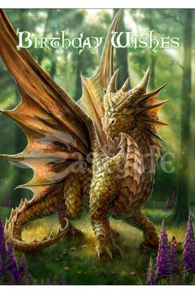 Friendly Dragon (AN16)