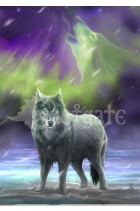 Aura Wolf (AN59)