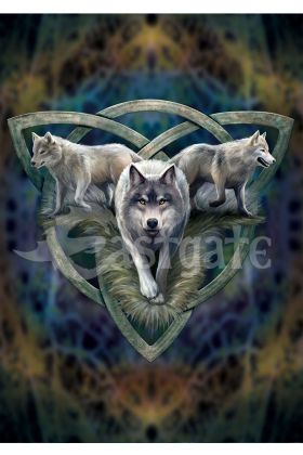 Wolf Trio Card (AN93)