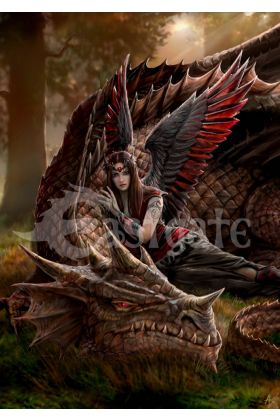 Winged Companions by Anne Stokes (ART27)