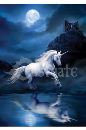 Moonlight Unicorn by Anne Stokes (ART40)