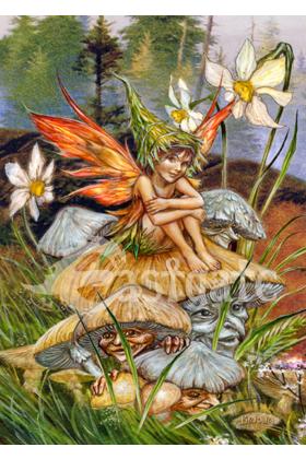 Mushroom Fairy (ART49)