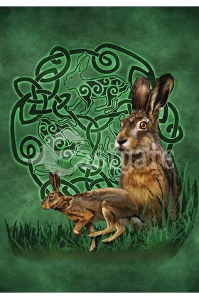 Celtic Hare (BA1)