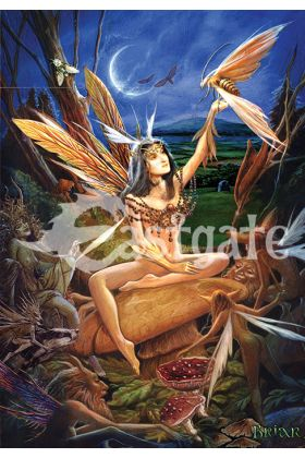 Moth Faery (BM21)