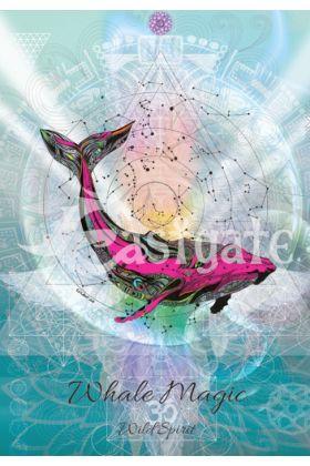 Whale Magic (KA2)