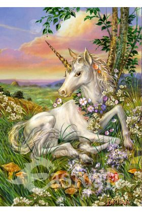 Newborn Unicorn by Briar (ART47)